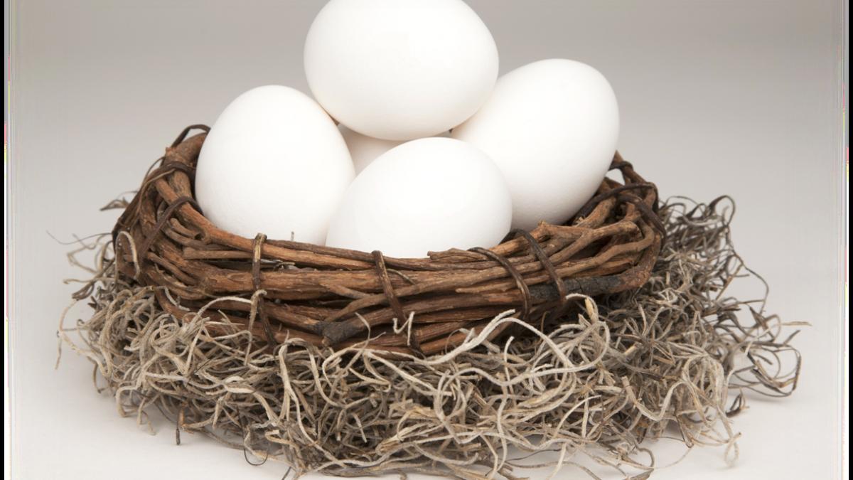 investment-eggs
