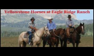 Yellowstone Horses at Eagle Ridge (Island Park)
